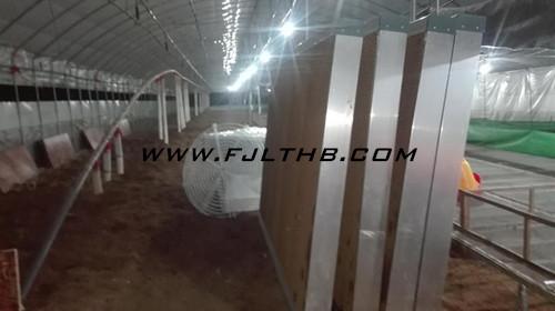 漳州养鸭户/风机水帘供货